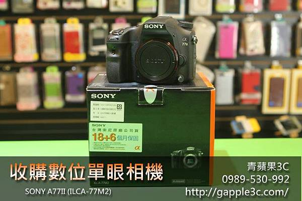 收購數位單眼相機-sony a77II.jpg
