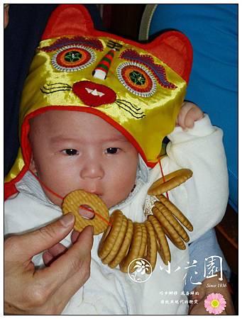 收涎寶寶吃餅乾