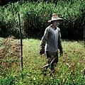 01-作農...是為了人與土地的幸褔!.jpg