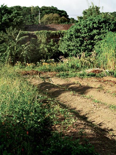 16-作農...是為了人與土地的幸褔!.jpg