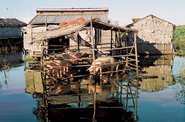 05-漂浮的世界遺址-柬埔寨的水上人家.jpg