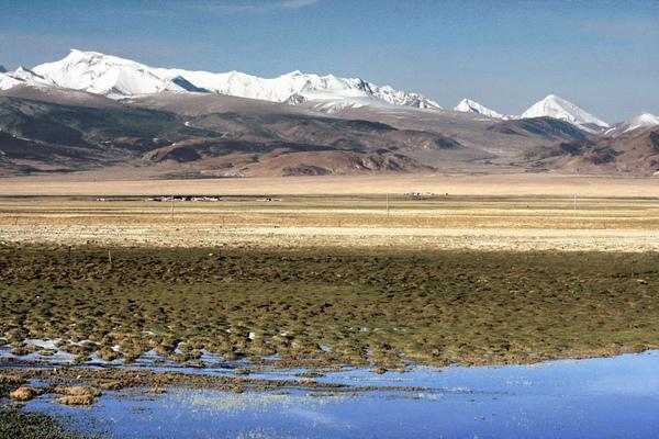 06-西藏的移動小學.jpg