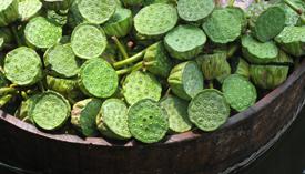 lotus seeds.jpg