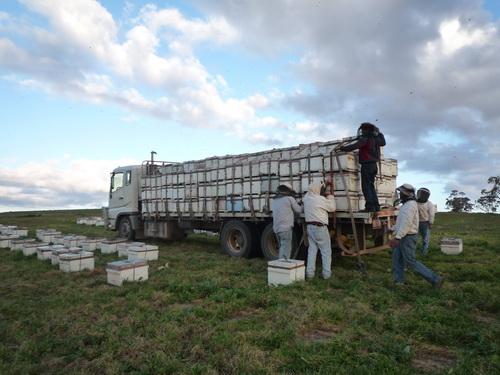 P1190797 loading.JPG