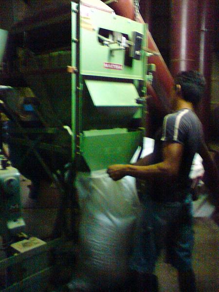 ECPP咖啡處理廠工人.JPG