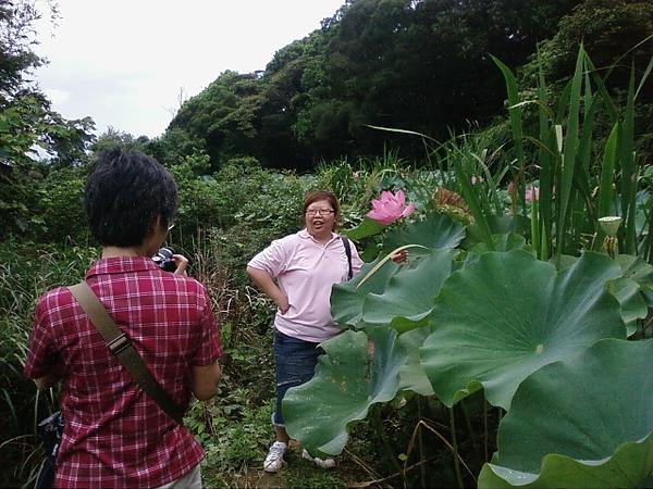 竹峰茶園7
