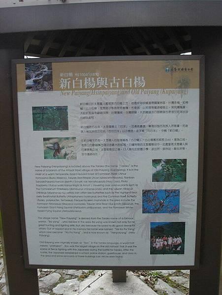 中橫-花蓮之旅030