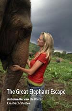 安東尼與大象