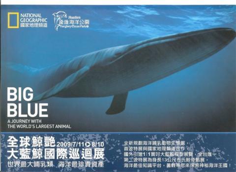 國家地理--藍鯨