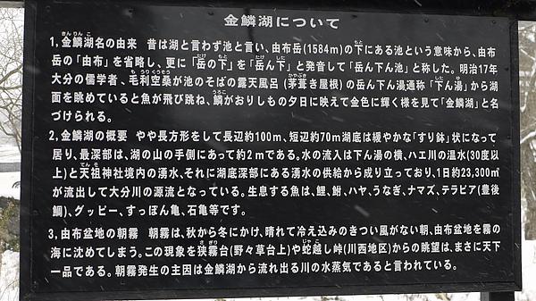 YO15.JPG