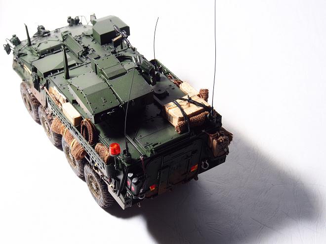 M1134-In-03.JPG