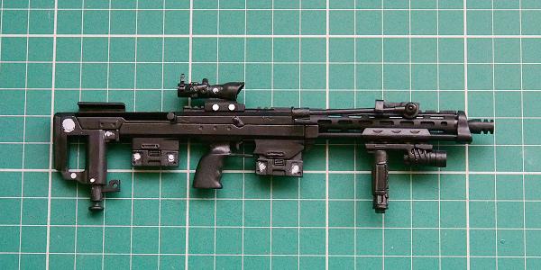 007-DSR-1.JPG