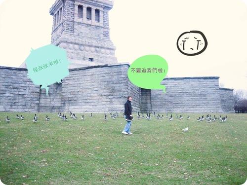 Ducky on Liberty Island