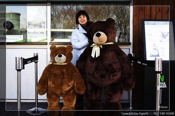 泰迪態博物館售票處有二隻大熊... @首爾塔