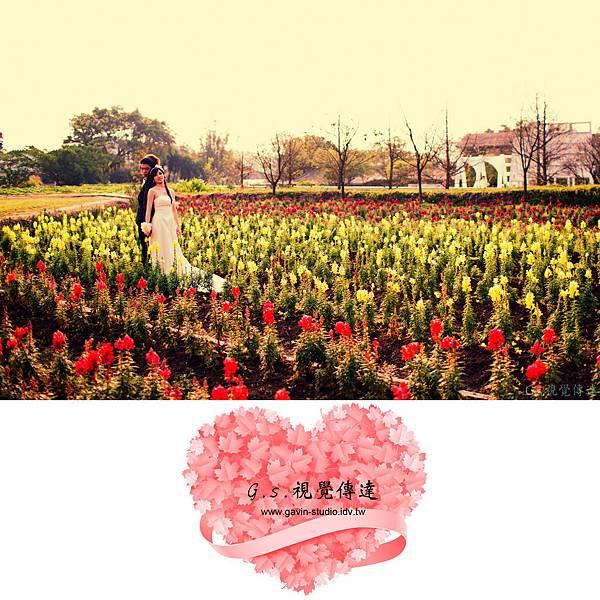 大屯山農場-幻羽-編排-09