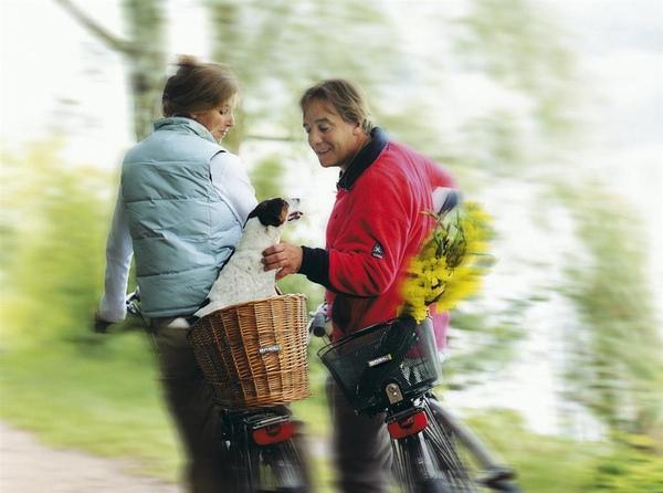 寵物手工竹籃