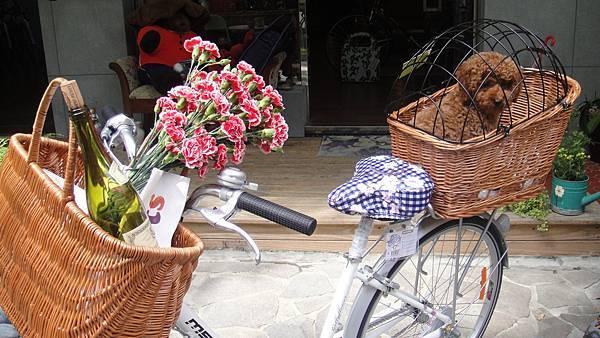 群景單車下午茶