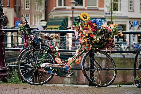 2-Bike_Amsterdam_300dpi_150x100mm_D