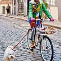 IKEA-SLADDA-bicycle-3-810x1214.jpg
