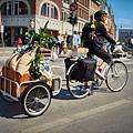 IKEA-SLADDA-bicycle-5.jpg