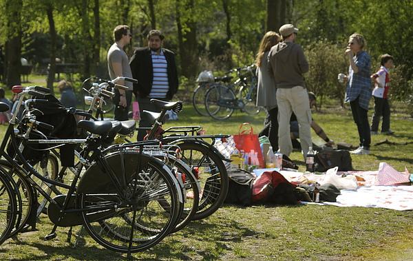 單車與草地