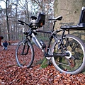 Bobike-sfeer-Junior (Large).jpg