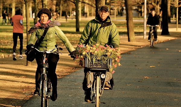 We Cycle Amsterdam1.jpg