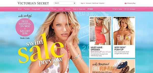 VS Website