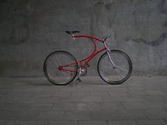 Vanhulsteijn bicycles, Vanhulsteijn