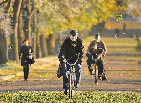 高科技輕單車 不見得省時省力