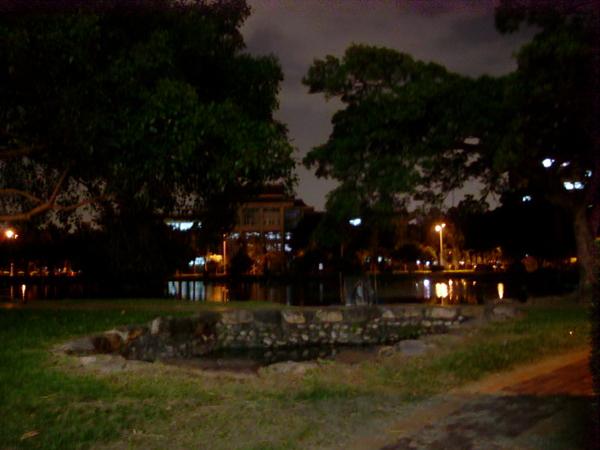 中興湖(夜)