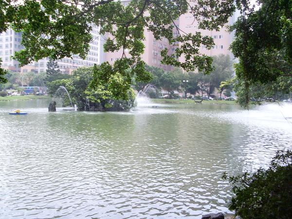 中興湖一景