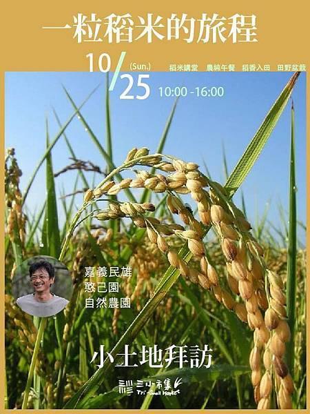一粒稻米的旅行