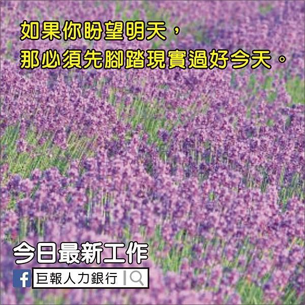 01-31-賴@發到這.jpg
