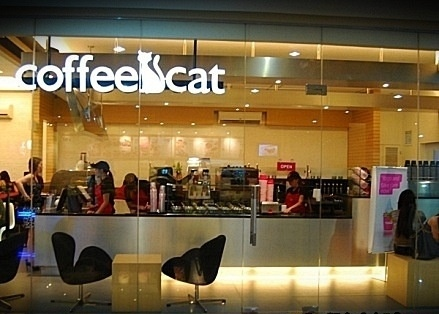 coffeecatcebu.jpg