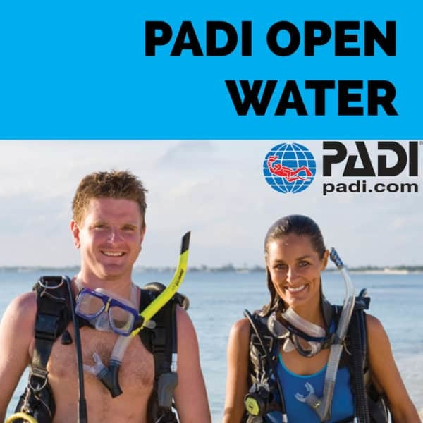 PADI-Open-Water-600x600.jpg