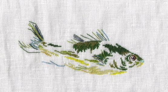 魚b.jpg