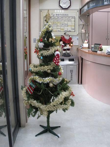 吉田聖誕樹側面
