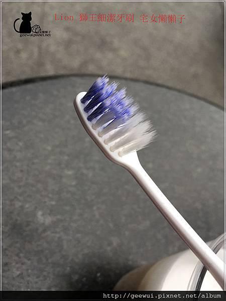 Lion 獅王細潔牙刷 來自日本 牙齒保健的好幫手 ! 健康養身