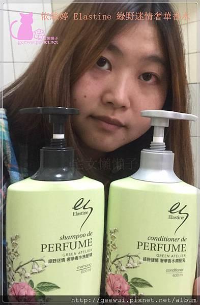ELASTINE 伊絲婷 綠野迷情奢華香水洗髮精 回頭率女神 愛用 時尚香氛 無矽靈升級版 淡雅香氣 香味持久 文彩元 美髮相關