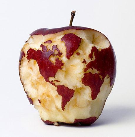 啃蘋果得手機.jpg