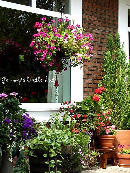A garden in flower pots2.JPG