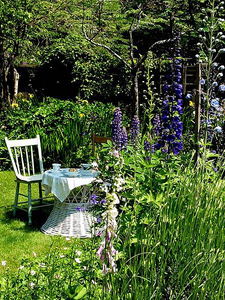 June garden 178.JPG