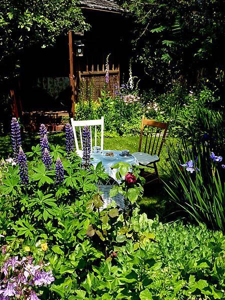 June garden 175.JPG