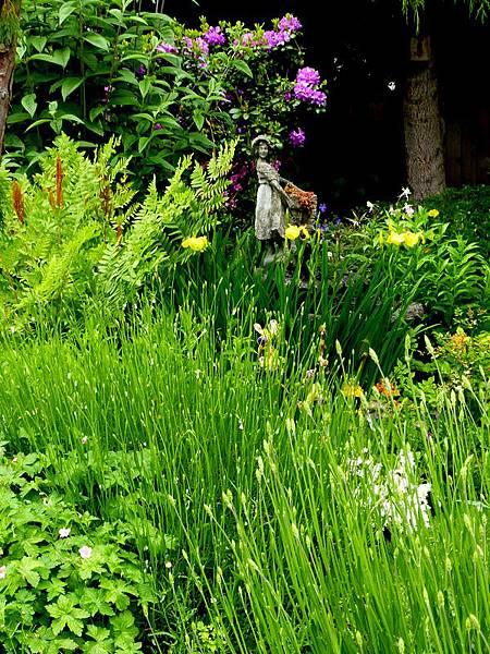 June garden 002.JPG