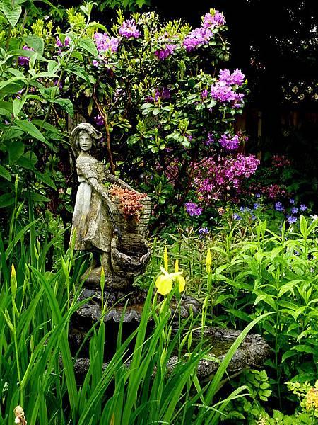 garden in the rain 237.JPG