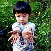 寶寶的手.JPG