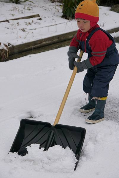 2012 一月雪 094.JPG