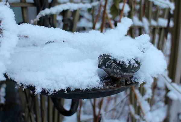 雪景2013 057