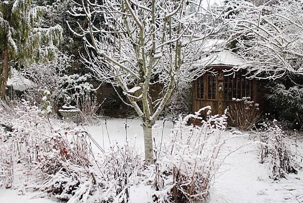 雪景2013 006
